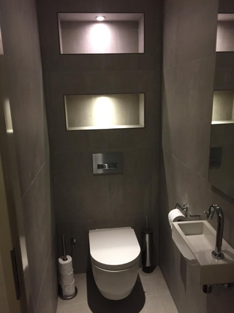 Toilet project